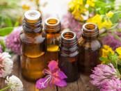 Découvrez les bienfaits des huiles essentielles avec le Coté Bio à Villiers le sec.