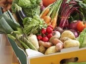 fruits-et-legumes-10678209dvimu